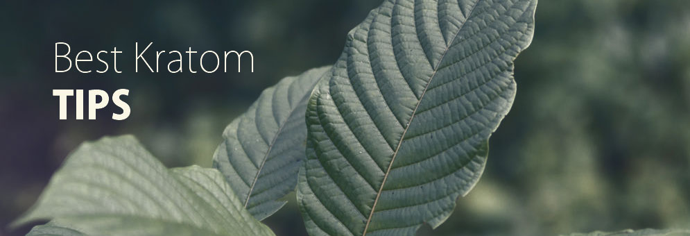 Best Kratom Tips for the Beginners