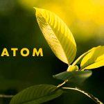 How-People-Recognize-Kratom