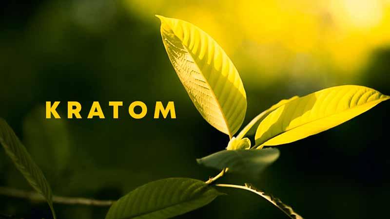 How People Recognize Kratom?