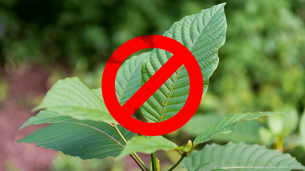 Actions Regarding Kratom Ban