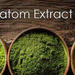 kratom-Extract