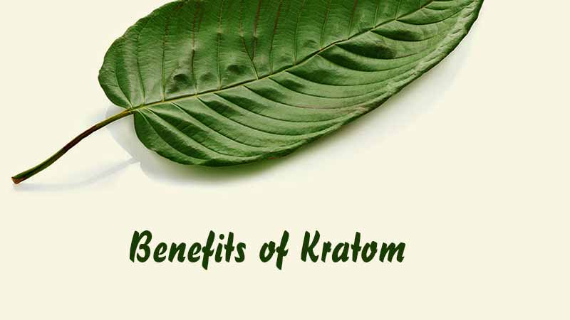 benefites-of-kratom