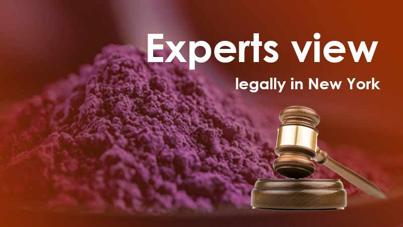 experts-view-legally-in-New-York