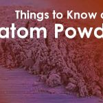 things to know about kratom powder