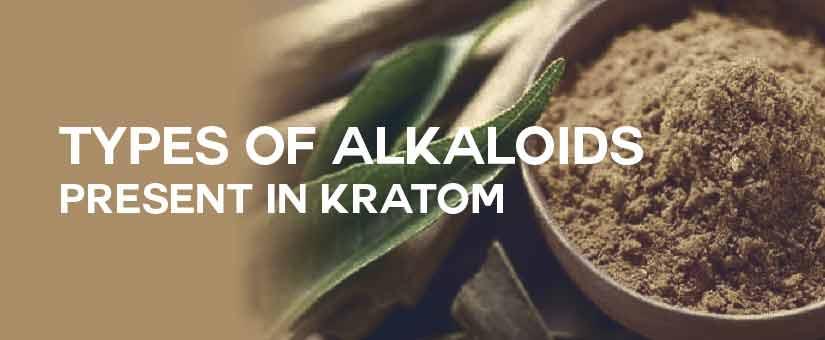Types-of-Alkaloids-present-in-Kratom