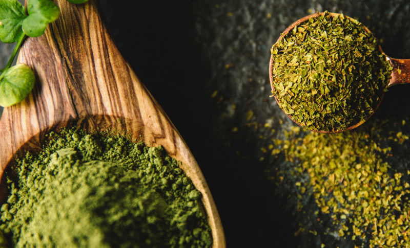 How to Keep your Kratom Tolerance real? - Kay Botanicals