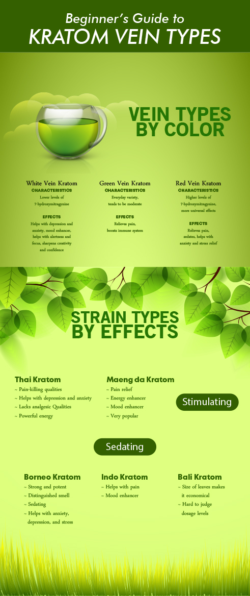 Beginner's Guide to Kratom Vein Types