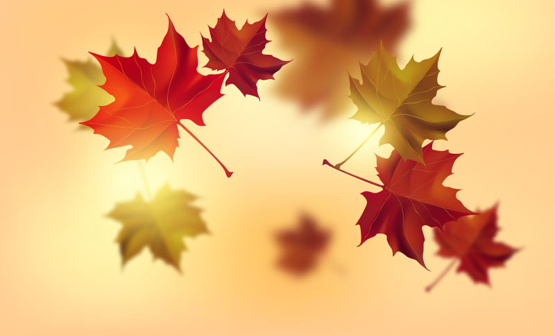 Autumn Sale on Kay Botanicals, This October – Read more.